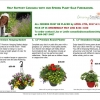 Cascadia's Plant Sale Fundraiser