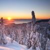 Cascadia Society's January eNewsletter